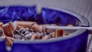 Fakty i mity o paleniu papierosów palenie papierosów