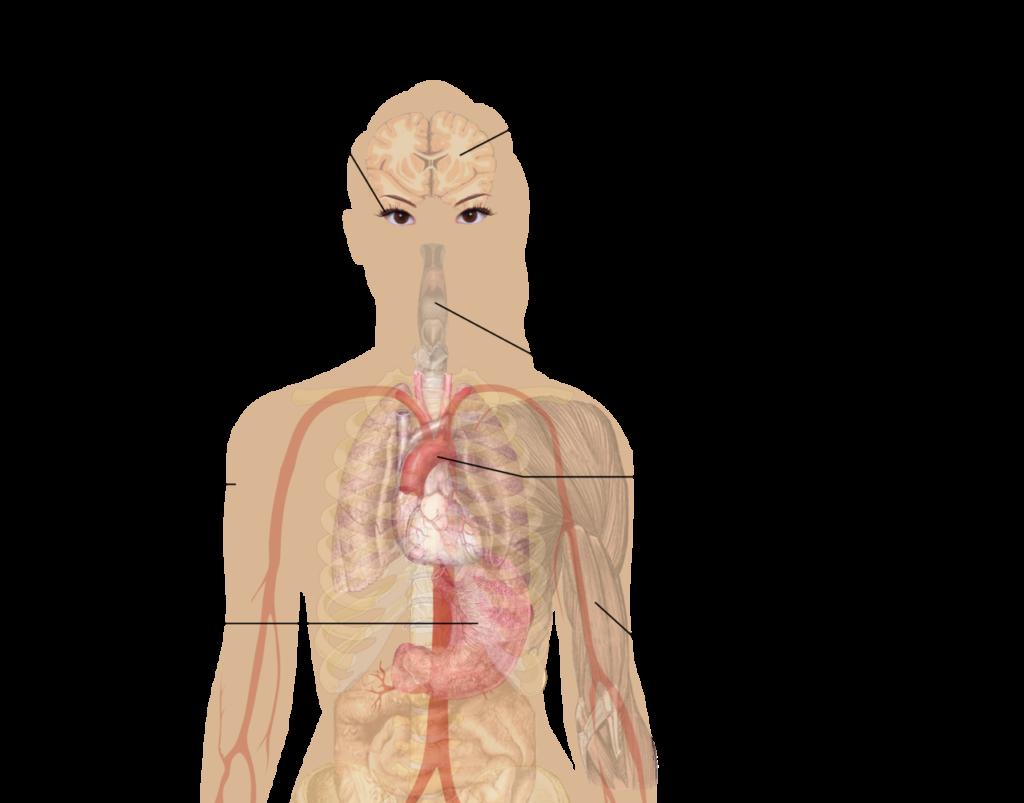 symplomy przedawkowania nikotyny na osobie